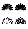 lotus silhouette vector image vector image