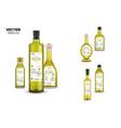 natural extra virgin olive oil glass bottles vector image vector image