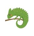 Chameleon Realistic Childish vector image