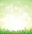 Green grass with background vector image