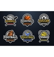 Set of sports logos vector image