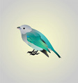blue birdy vector image vector image