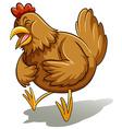 Brown fat hen vector image vector image
