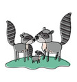 cartoon raccoon couple and cub over grass in vector image vector image