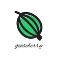 Doodle gooseberry vector image