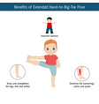 infographics of yoga pose infographics of yoga vector image vector image