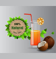 set of fruit juice splash in a glass vector image