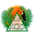 tropical paradise card with vector image vector image