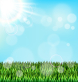 Green grass lawn with sunlight on blue sky Floral vector image vector image