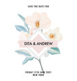 magnolia rose flower bouquet isolated on white vector image