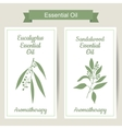 Set of 2 labels with Eucalyptus and sandalwood vector image