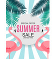 summer sale concept background vector image vector image