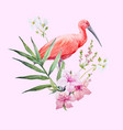 watercolor ibis bird composition vector image vector image