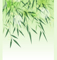 bamboo green leaf vector image vector image