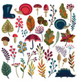collection of autumn nature elements vector image vector image