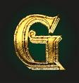g golden letter vector image vector image