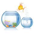 Aquarium and fish vector image vector image