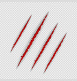 claw scratches isolated on transparent background vector image