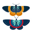colorful tropical butterfly moth icon in cartoon vector image vector image