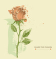 love greeting card single rose paint vector image