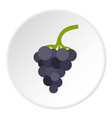 bunch of grapes icon circle vector image vector image