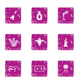 ghost house icons set grunge style vector image vector image