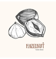 Hazelnut Card Hand Draw Sketch vector image vector image