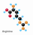 molecular omposition and structure of arginine vector image vector image