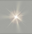 easy to use effect of sunlight special lens flare vector image