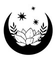 magic black moon with stars and lotus on white vector image
