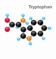 molecular omposition and structure of tryptophan vector image vector image