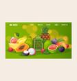 natural healthy food website design vector image vector image