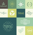 set of natural organic vegan badges vector image vector image