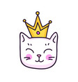 white kitten with crown vector image vector image