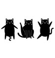 with black cats cute animal collection vector image