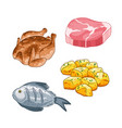 food and meal set in cartoon style vector image