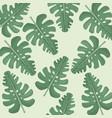 monstera leaves jungle seamless pattern vector image