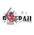 baseball player banner vector image