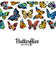 decorative butterflies colored insects vector image