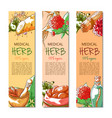 ginseng vertical hand drawn banner vector image vector image
