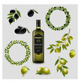 olive set with wreath isolated transparent vector image vector image