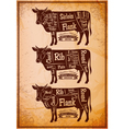poster with three different diagram cutting cows vector image vector image