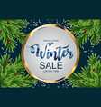 winter sale background special offer banner vector image vector image