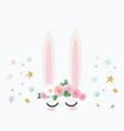 bunny cute cartoon character for birthday baby vector image