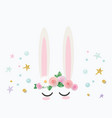bunny cute catroon character for birthday baby vector image vector image