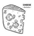 cheese fresh food hand drawn vector image