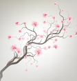 Background With Sakura Tree vector image