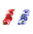 berries juice splash cherry and blueberry set vector image vector image
