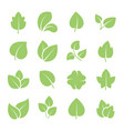 green tree leaves ecology friendly natural vector image vector image