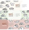Nuts Package Design Banner Set